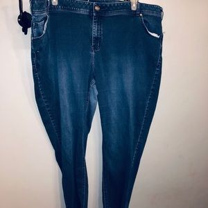 Lane Bryant plus size skinny jeans 👖